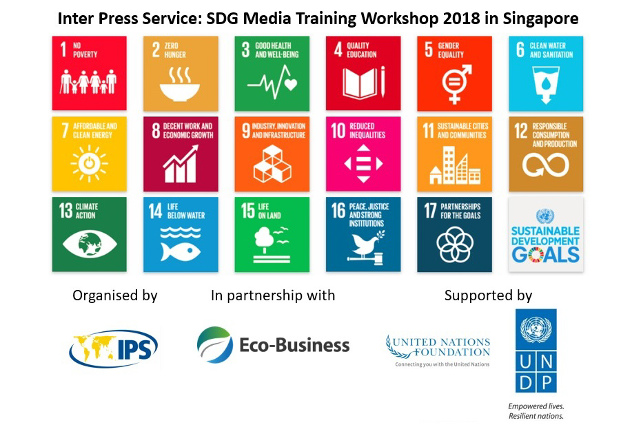 IPS SDG media workshop